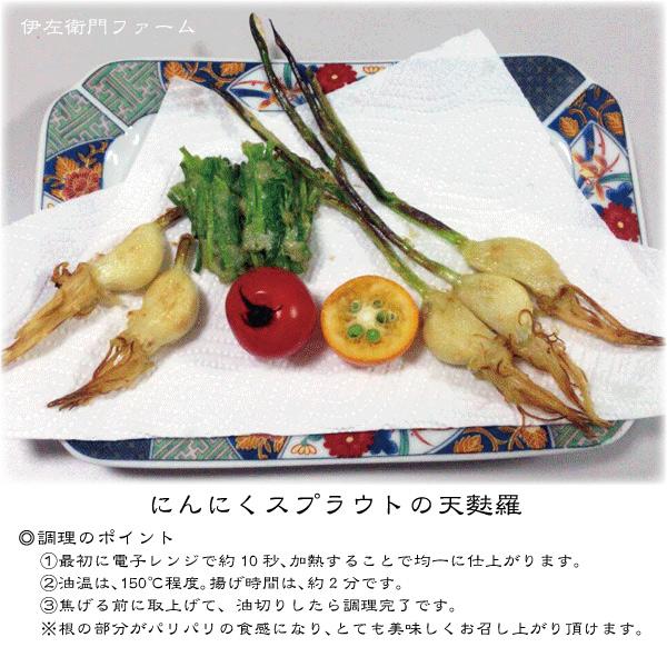 にんにくスプラウトの美味しい調理例を募集しております!ぜひ、ご応募ください!